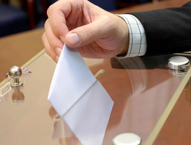 Стали відомі перші переможці виборів на Волині