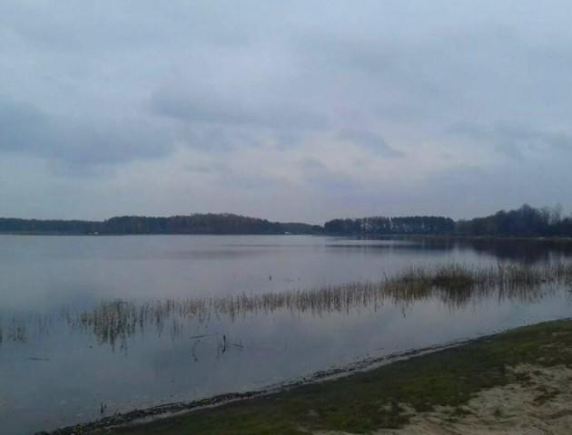 Показали осінню красу волинського озера Люб'язь. ФОТО