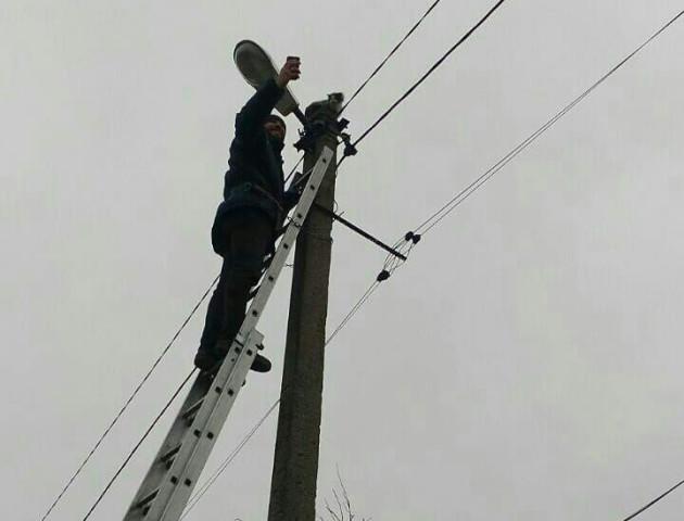 Як рятували кошеня, яке добу просиділо на 9-метровому стовпі