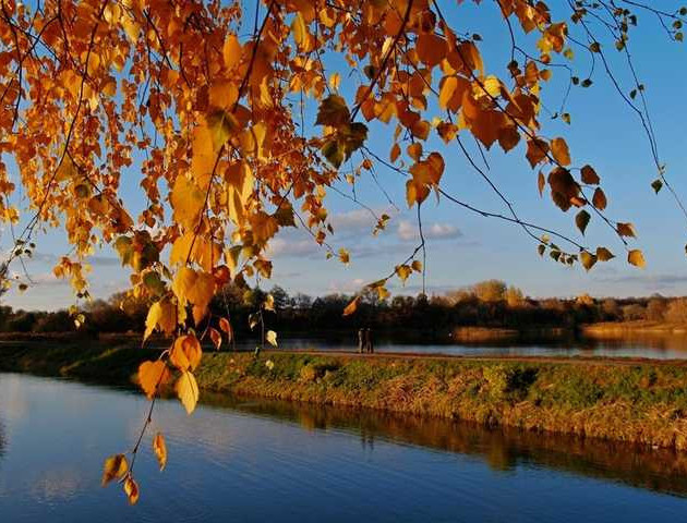 Якою буде погода у Луцьку та області 14 листопада