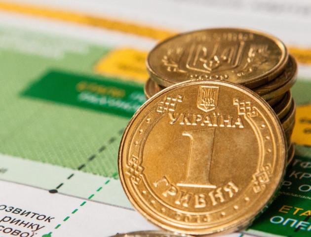 Влада хоче забрати у місцевих бюджетів до 80% коштів - депутат