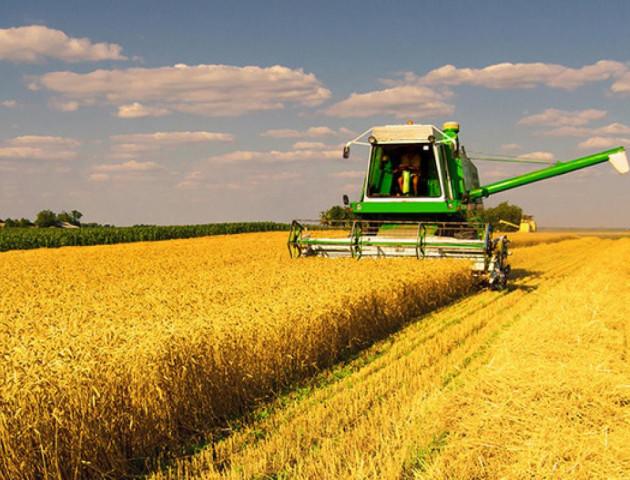 ТОП-7 кращих сільськогосподарських підприємств Волині