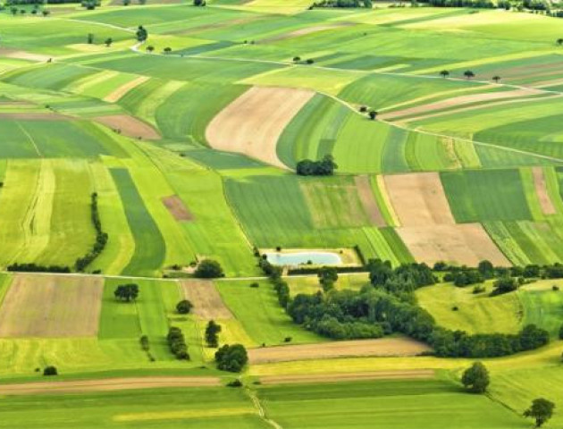 Княгининівській сільській раді повернули 11 земельних ділянок