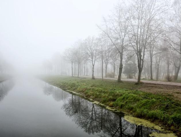 Туманний ранок у луцькому парку. ФОТО