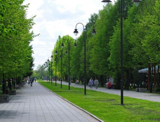 Центральний парк Луцька приберуть за рахунок міста