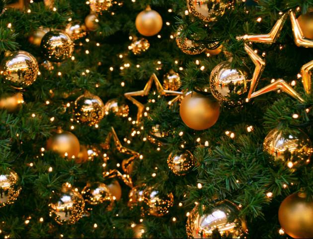 Волинське місто витратить на новорічну ялинку 70 тисяч гривень