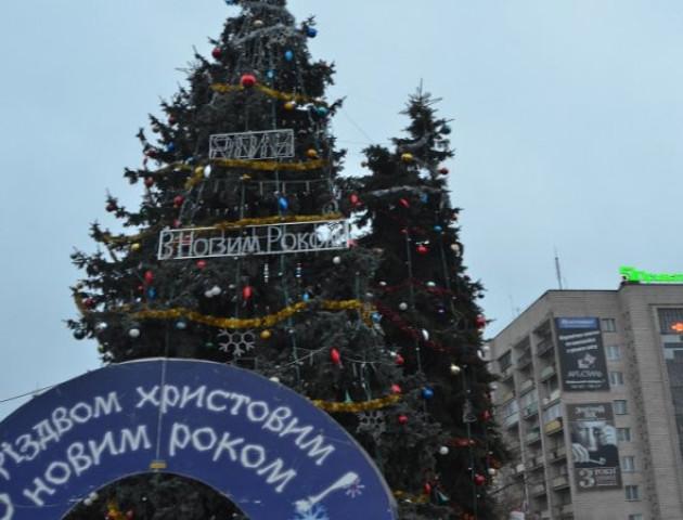 На новорічні ялинки у центрі Луцька потрібно понад півмільйона гривень