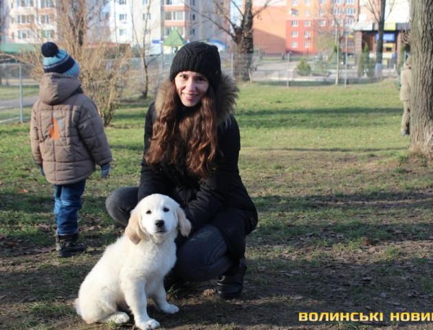 У Луцьку з'вилося місце для вигулу собак