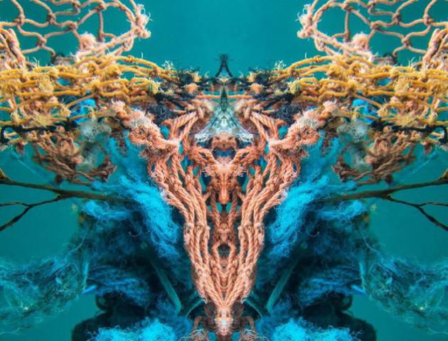 Прибульці з моря: Фотографиня робить неймовірні знімки сміття під водою
