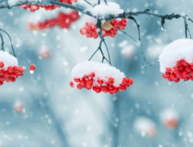Синоптики розповіли про температурні рекорди цієї зими