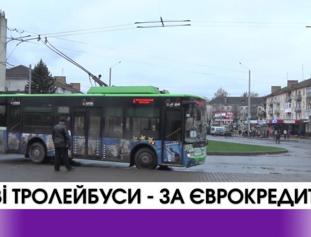 6 мільйонів єврокредиту для купівлі тролейбусів у Луцьку. ВІДЕО