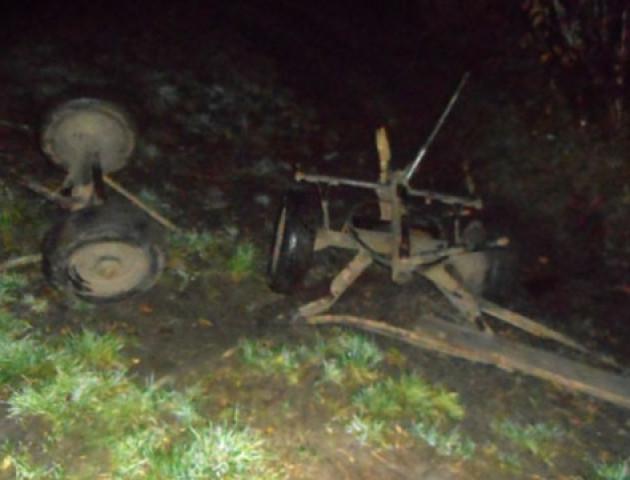 На Рівненщині п'яний водій влетів у фіру - жінка в реанімації, кінь загинув