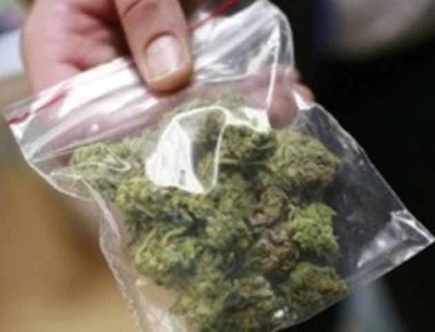 Канабіс, амфетамін та марихуана: що знайшли луцькі поліцейські