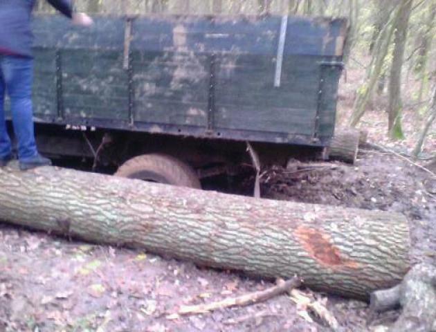 У Луцькому районі в болоті застрягла вантажівка з краденою деревиною