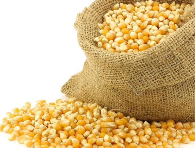 Волинянин викрав 15 мішків кукурудзи