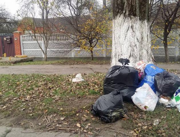 Гори сміття лучани залишають просто неба. ФОТО