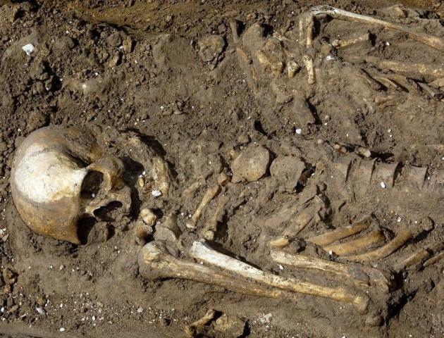 На Волині поблизу будівництва знайшли рештки людини