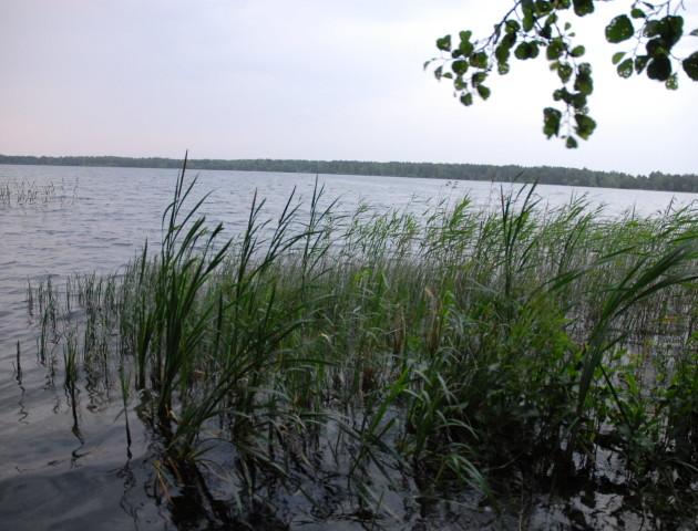 Рекреаційне навантаження на озеро Пісочне хочуть зменшити