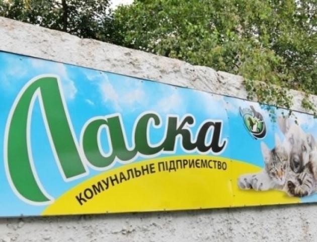 У Луцьку фінансування КП «Ласка» збільшили на понад мільйон гривень