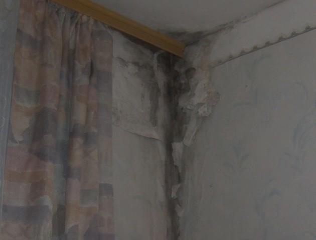 Дощ на голову та грибок на стінах: грошей на ремонт даху луцького будинку − немає. ВІДЕО
