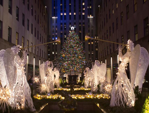 Дух Свята і благодійність. У США з новорічної ялинки побудують оселі для тих, хто їх потребує. ВІДЕО