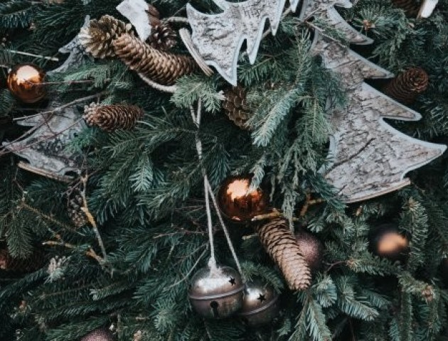 Як відсвяткувати Новий рік та не нашкодити природі: прості поради