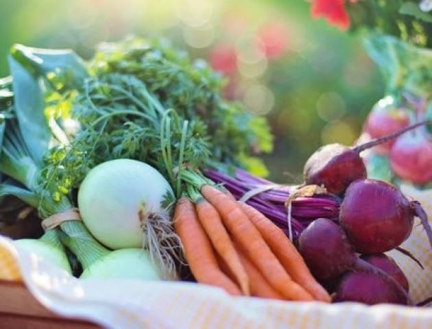 Чому тепличні овочі такі ж корисні, як свіжі з грядки