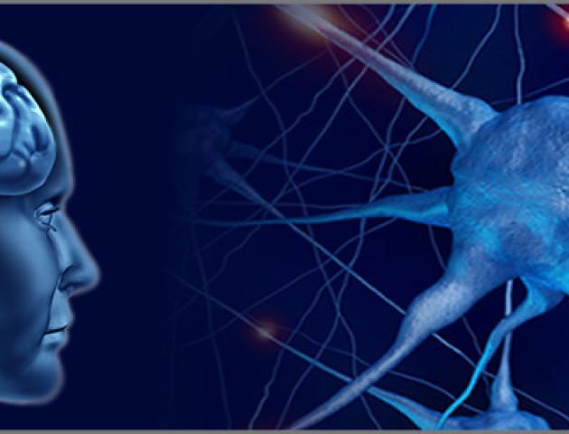 Нові надзвичайні можливості нейрохірургів. ВІДЕО