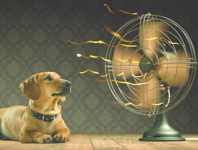 Ніч на 29 грудня стала найтеплішою з 1881 року
