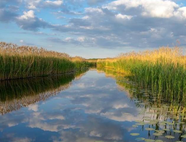 Дивовижні озерні краєвиди на світлинах волинського фотографа