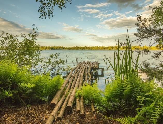 Опублікували неймовірні світлини волинського озера