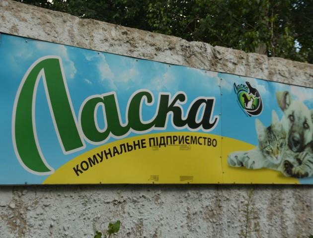 На території КП «Ласка» виявили наркотичні препарати