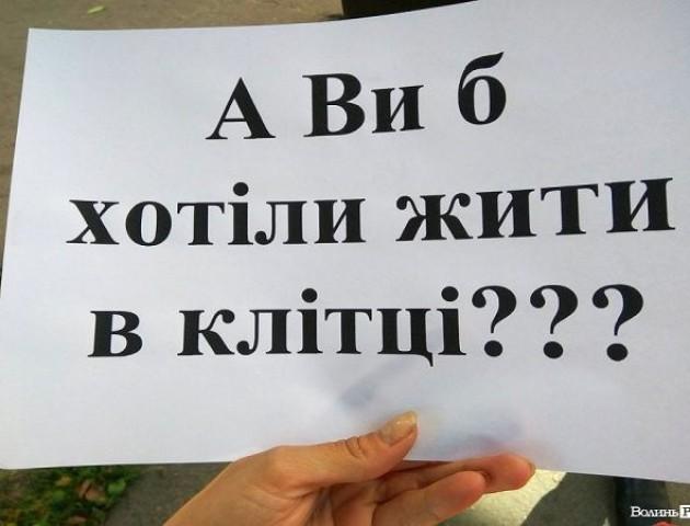 У Луцьку - мітинг проти цирку з використанням тварин