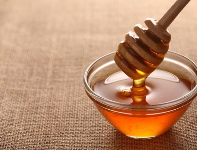 Волинські пасічники почали збір врожаю лісового меду
