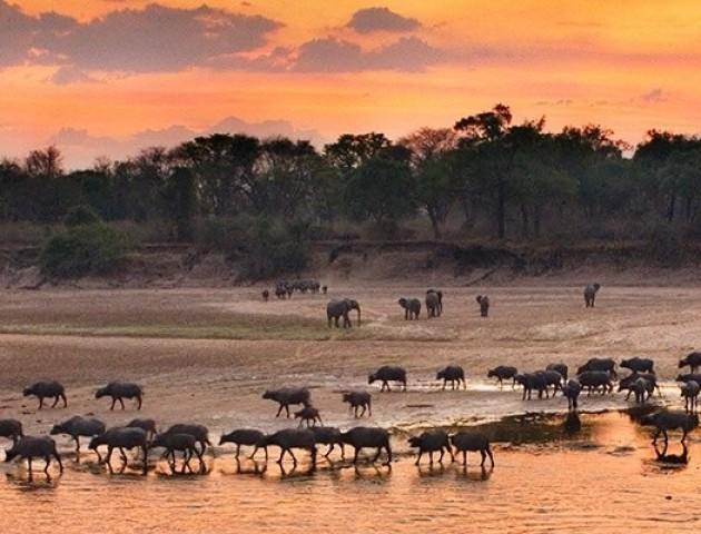 Неймовірні світлини природи Зімбабве