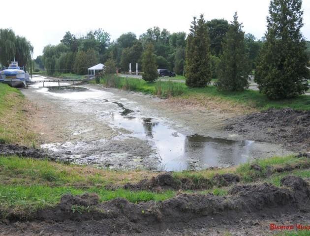 Луцький фотограф закликає рятувати міський парк від «зневоднення»