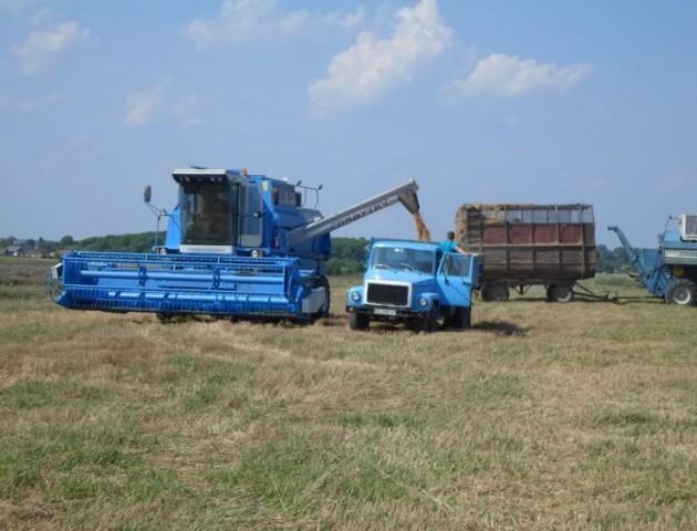 Суд арештував на Ковельщині посіви жита та пшениці
