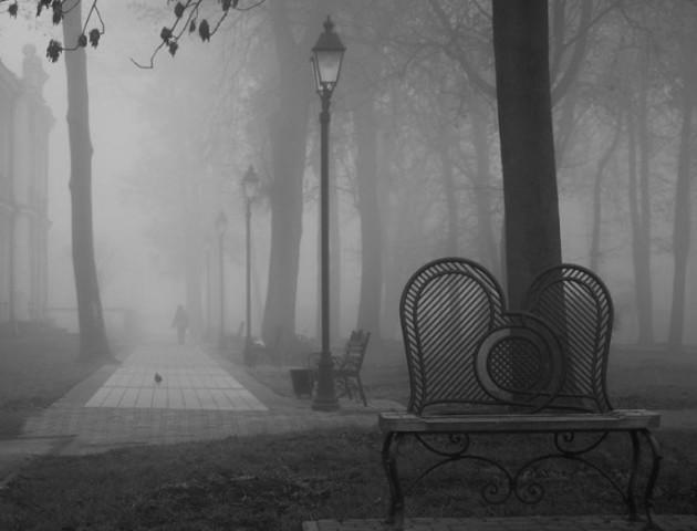Місто, що не впізнати: містичний Володимир у тумані. ФОТО