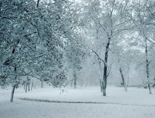 До Криму прийшла зима: з'явилися фото засніжених вулиць