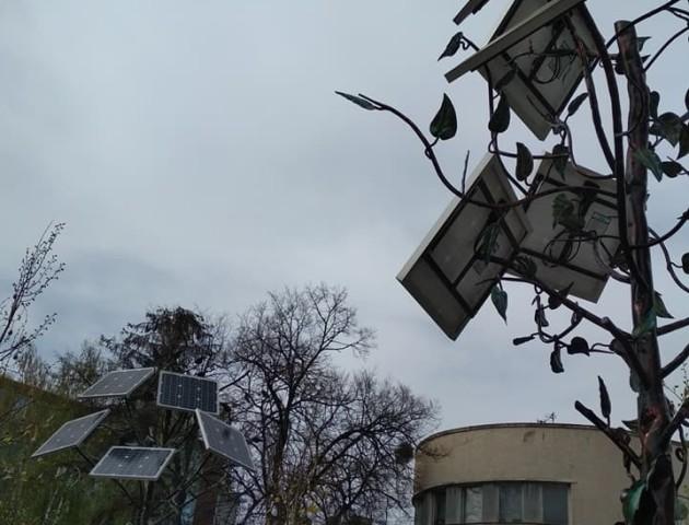 У центрі Луцька не працюють два «сонячні» дерева, які мали би заряджати телефони