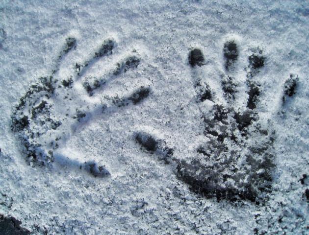 У лісі на Волині замерзли два чоловіки, - ЗМІ