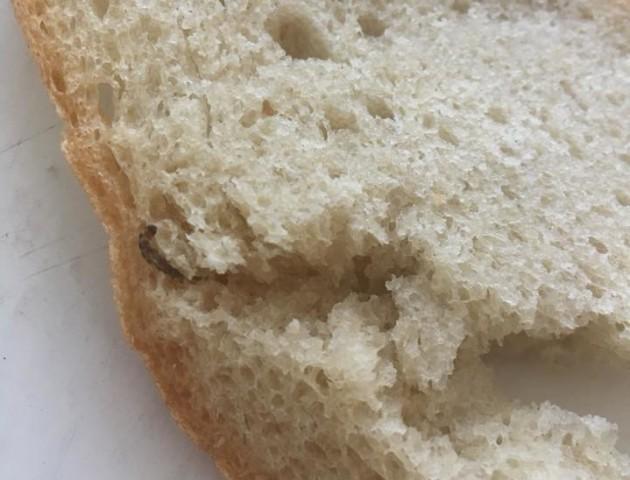 Лучанка придбала хліб із червами. ФОТО