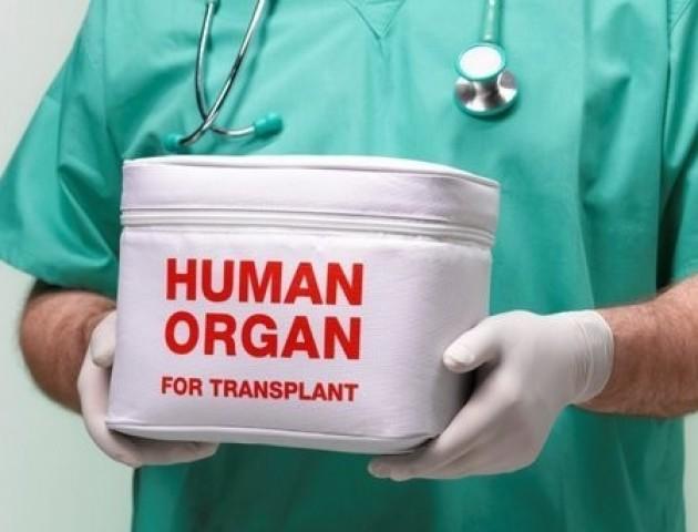 Всі ісландці за замовчуванням стануть донорами органів
