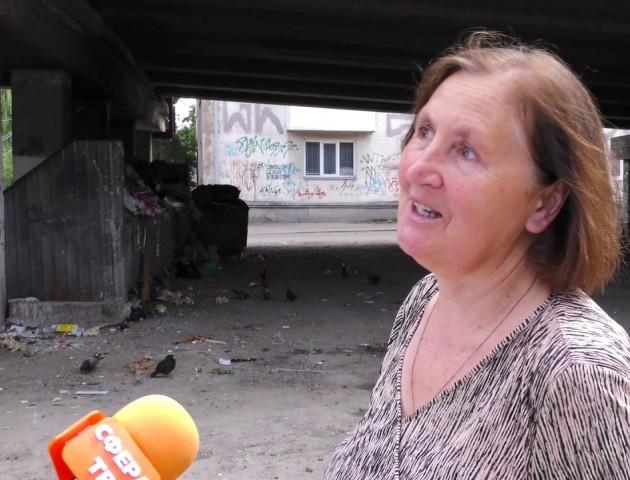 Переповнені смітники та безвідповідальні перевізники: лучани нарікають на комунальні служби
