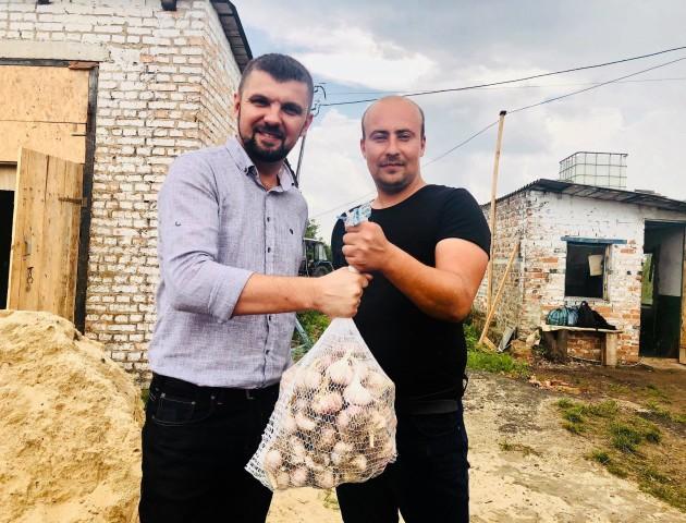 Бізнес на селі: волинський часник тепер постачають не лише всією Україною, а й в Англію та Грузію