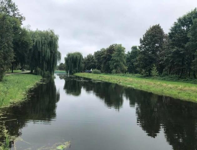 Показали, як очистили канали у Центральному парку Луцька. ФОТО