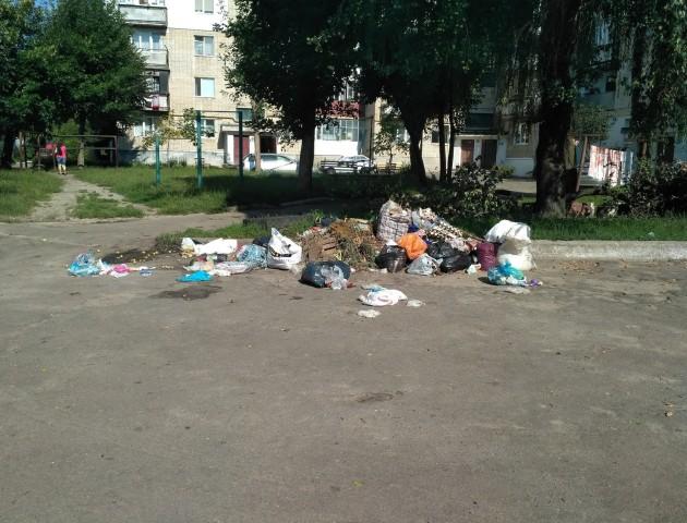 «У спеку тут так смердить»: у Ковелі люди залишають сміття просто у своєму дворі. ФОТО