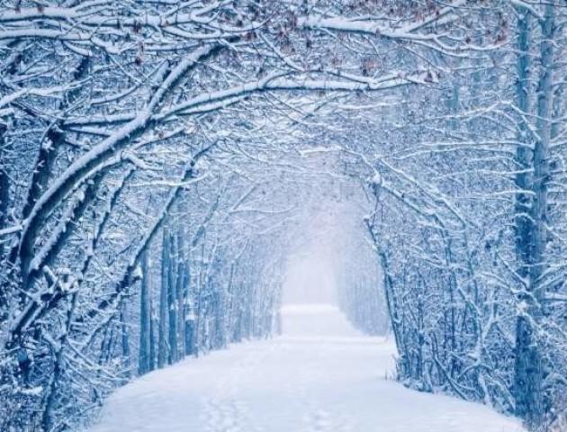 Метеорологи шокували прогнозом на майбутню зиму