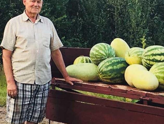 Волинянин розповів, як йому вдається 15 років вирощувати гігантські кавуни. ФОТО