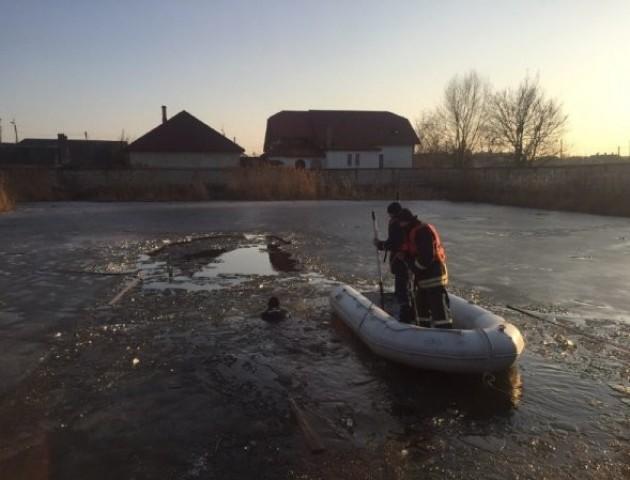 У Ковелі в ставку втопився чоловік